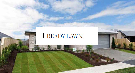 Ready Lawn